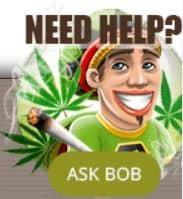 Stel je vraag aan Bob