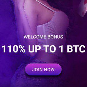 De bonus van Casinobit